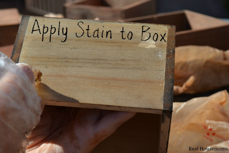 Apply Stain to Box