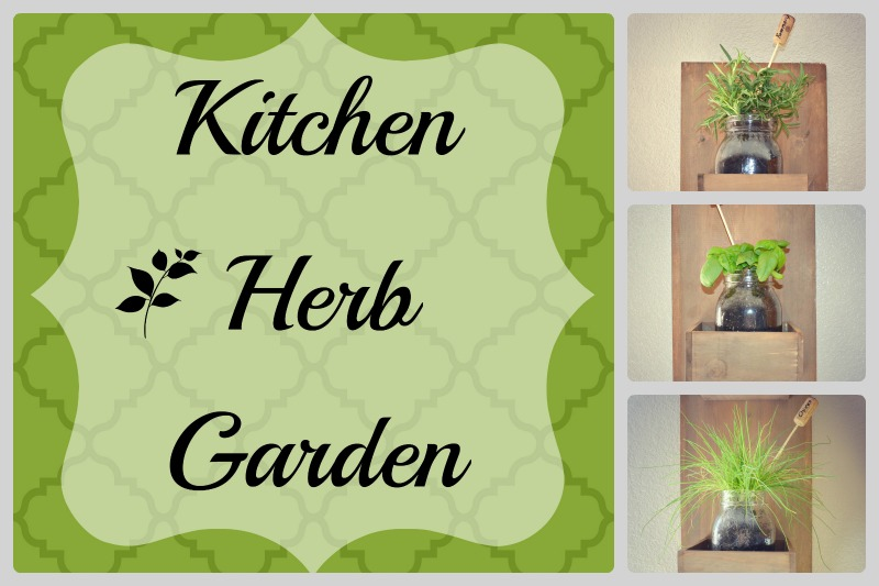 DIY Kitchen Herb Garden...easy and inexpensive
