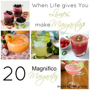 20 Magnífico Margarita Recipes