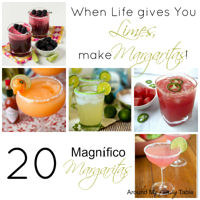 20 Magnífico Margarita Recipes