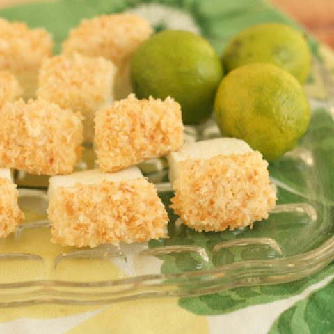 Toasted Coconut and Key Lime Marshmallows