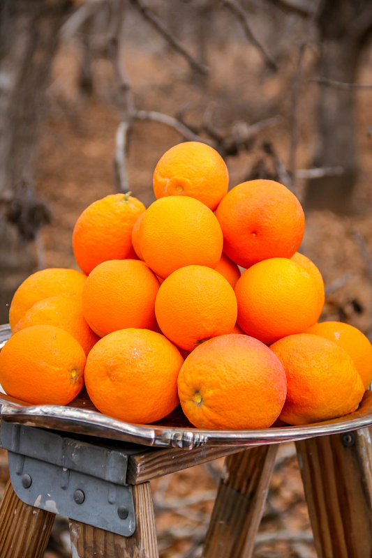 8 Uses for Leftover Orange Peels