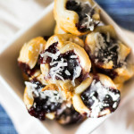 Blueberry Cottage Cheese Cookies