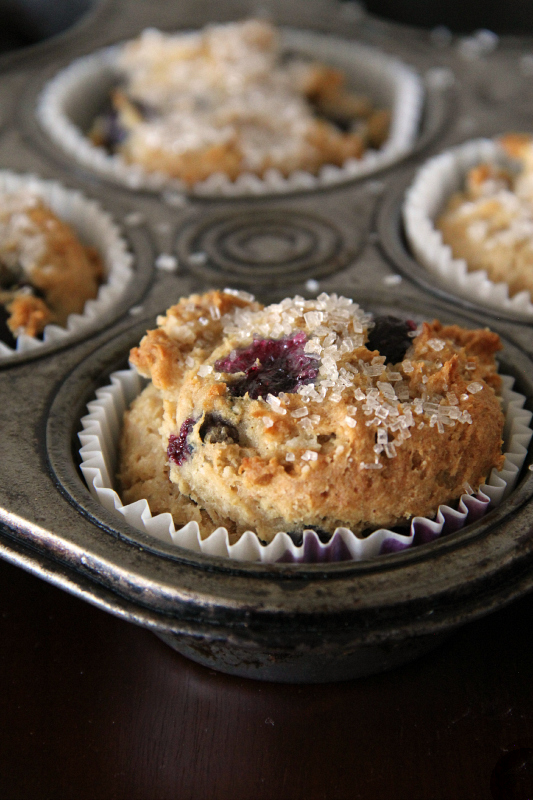 Gluten Free - Vegan Blueberry Muffins - Around My Family Table