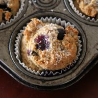 Gluten Free and Vegan Blueberry Muffins