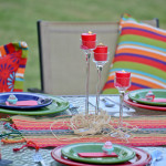 Summer Outdoor Oasis Party