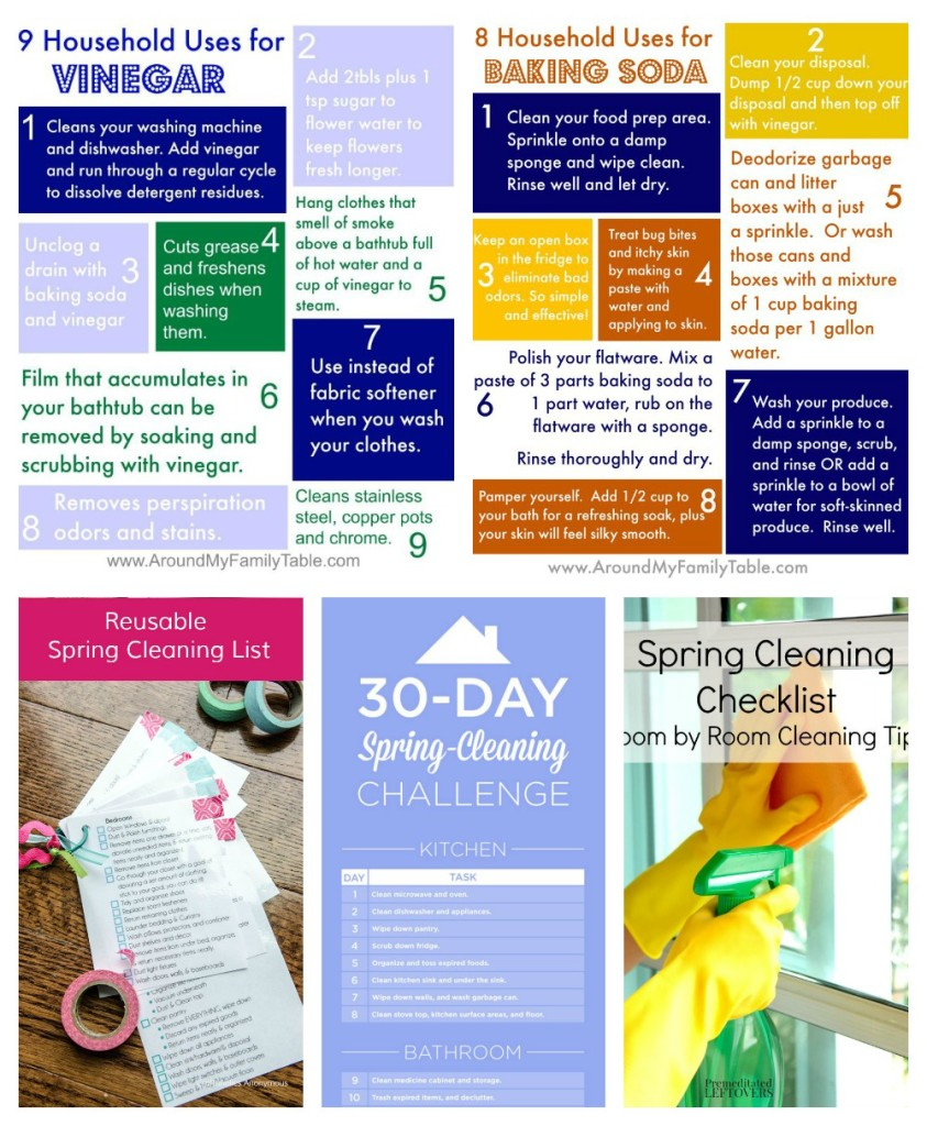 25 Spring Cleaning Tips & Tricks  Around My Family Tables