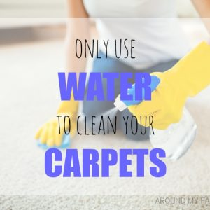 Why you should ONLY use WATER to clean your CARPETS