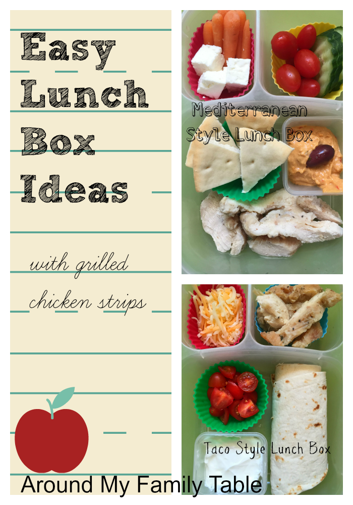 These 2 Easy Lunch Box Ideas are perfect for picky kids and busy mornings plus they are fun and healthy too.