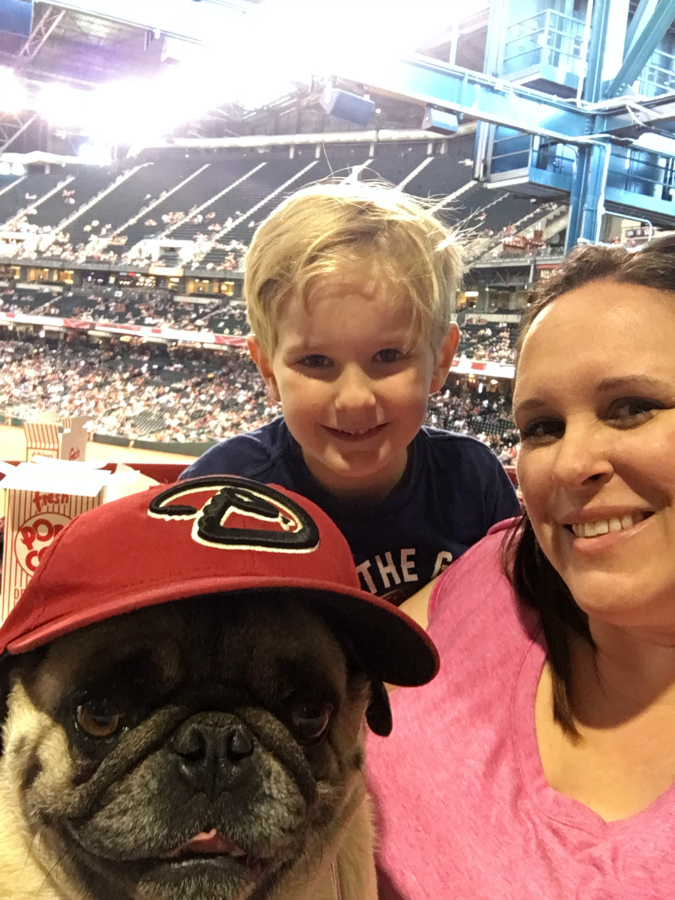 Take your dog to the Ballpark with PetSmart and the AZ Diamondbacks!