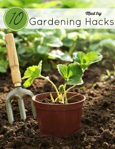 10 Must-Try Gardening Hacks