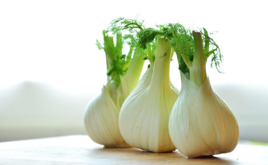 What's in Season Guide: Fennel