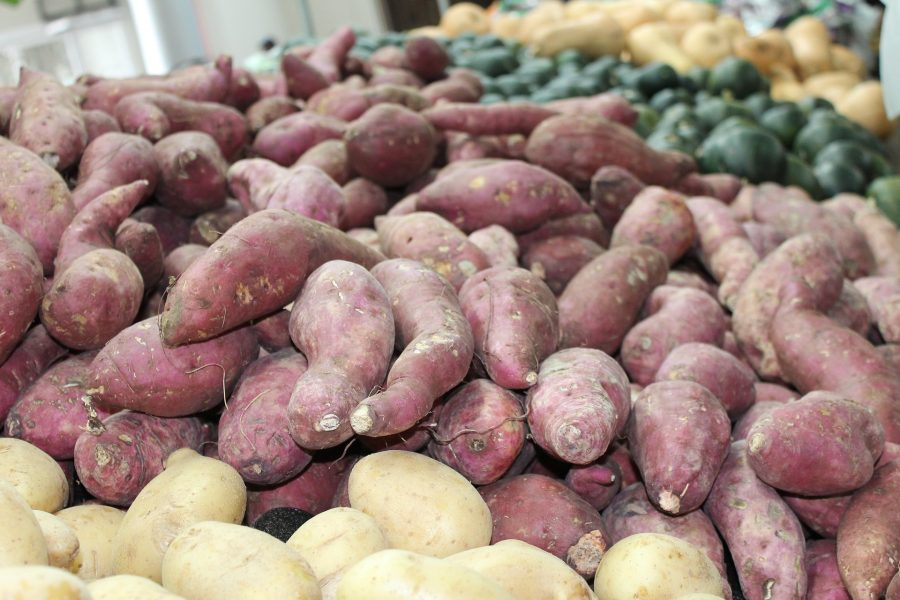 January -- What's in Season Guide: Sweet Potatoes