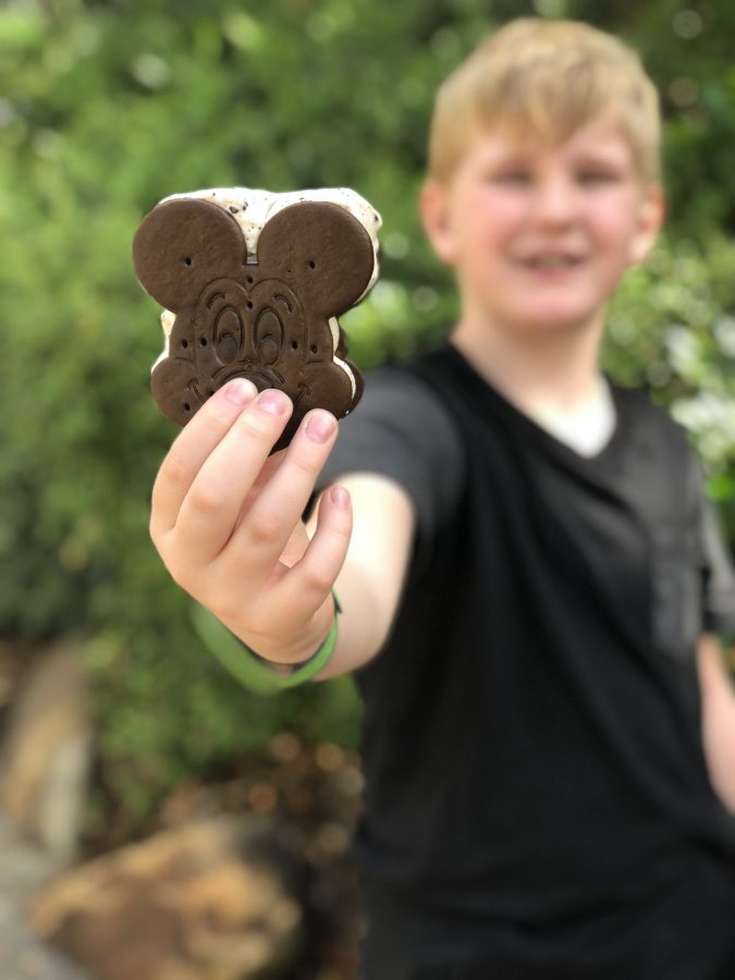 Mickey Ice Cream Sandwiches at Walt Disney World