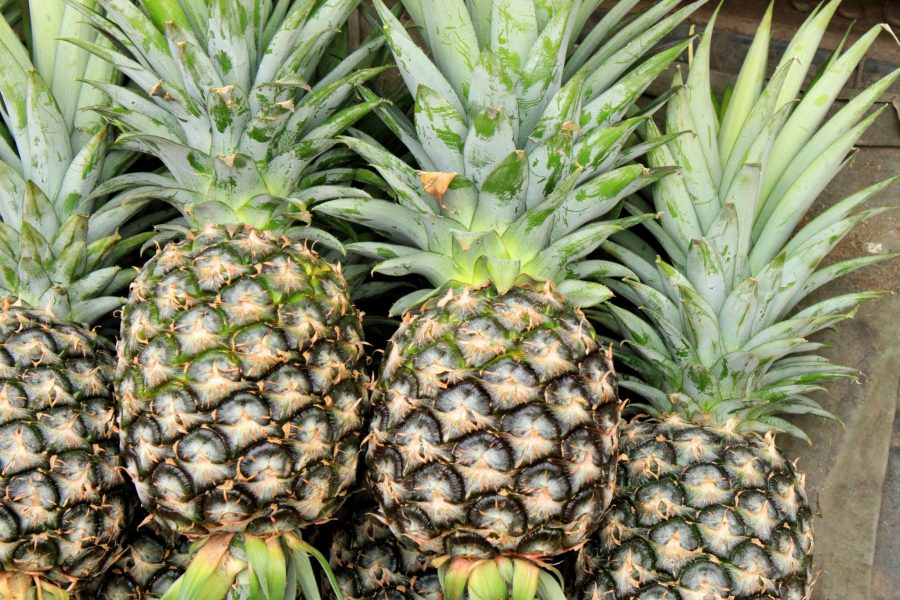 What's in Season -- Pineapple