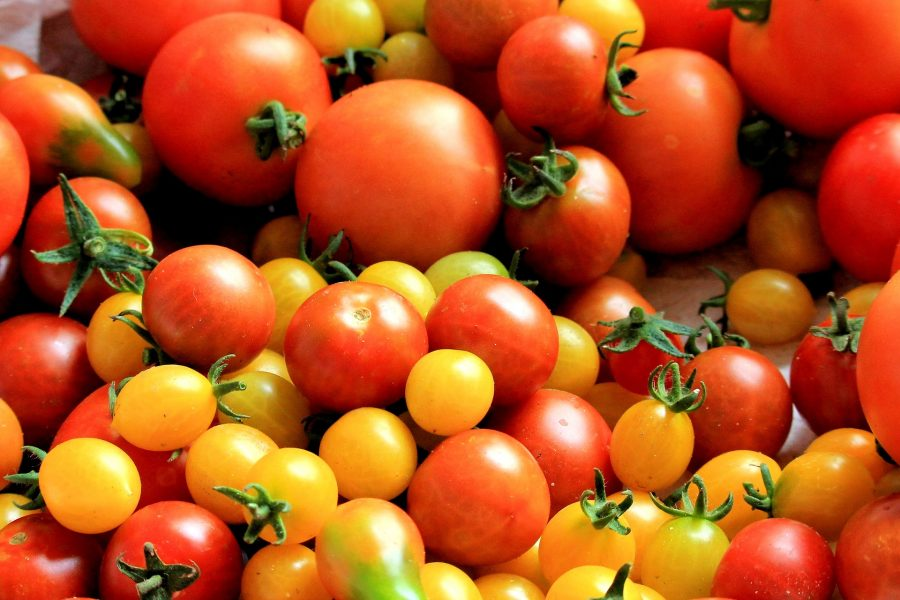 What's In Season--Tomatoes