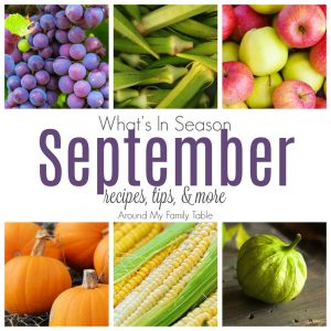 Bring on pumpkin & apple season! This September Seasonal Produce guide has recipes, tips, and more for everything in season this month.